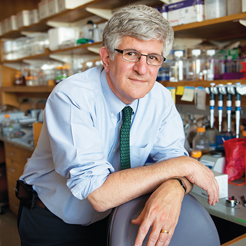 FDA Advisory Committee Member Dr. Paul Offit on Vaccine Safety, Efficacy and Distribution Image